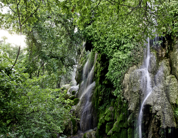 Gorman Falls.png
