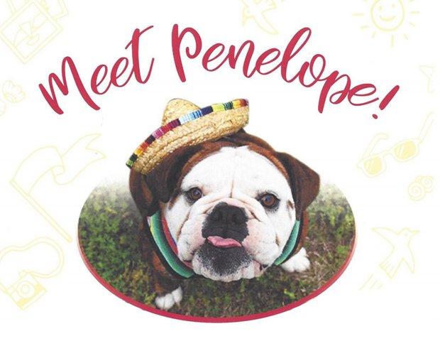 MeetPenelope