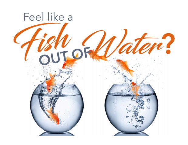 Downsizing Seminar - Feel Like a Fish Out of Water.png