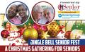 Jingle Bell Senior Fest 2019 flyer image