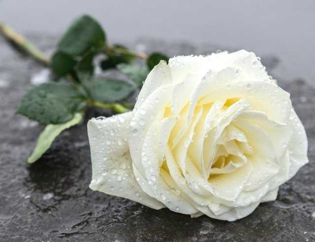 How to Make Funeral Planning Less Stressful