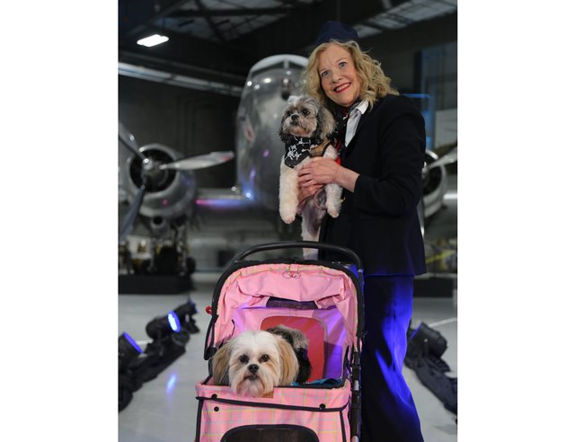 Virtual Wags & Whiskers Brunch 2021_MA Shute with her three Jet Set dogs.png