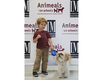 Virtual Wags & Whiskers Brunch 2021_Our youngest model Caleb with Grady the Dog in the Jet Set Pets Fashion Show.png