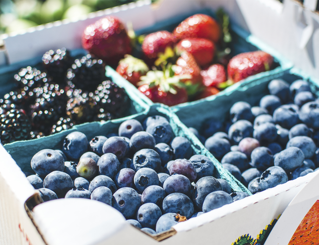 Reduce Memory Loss and Increase Health With Berries